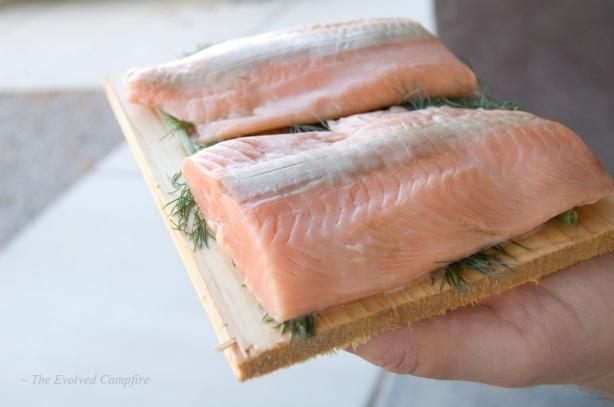 Salmon Dill Summer Squash Dinner